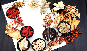 Bài thuốc chữa sùi mào gà hiệu quả của lương y Nguyễn Đức Thành